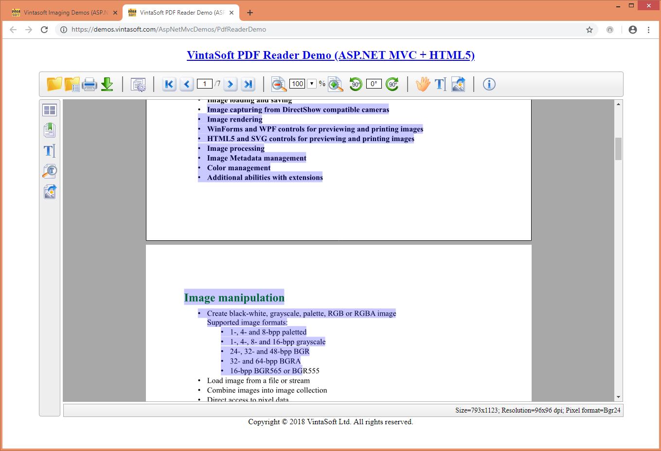 WebViewer Demo