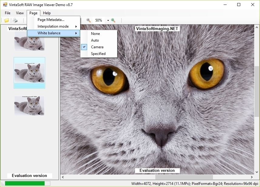 RAW Image Viewer Demo
